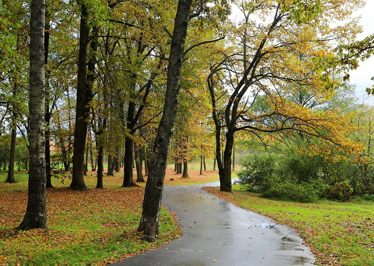 Парк «30-летия октября»